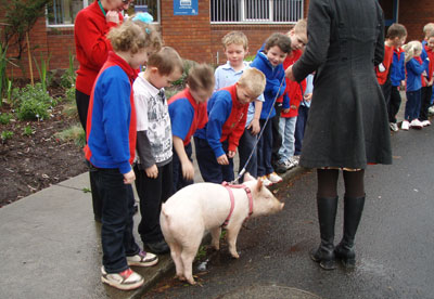 Students in Units A,B & D meet Brightside Farm pet pig with owner Emma Haswell.